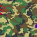 サバゲー キツネ狩り